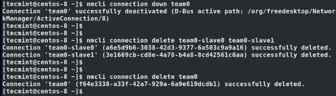 Delete Team Network Interfaces