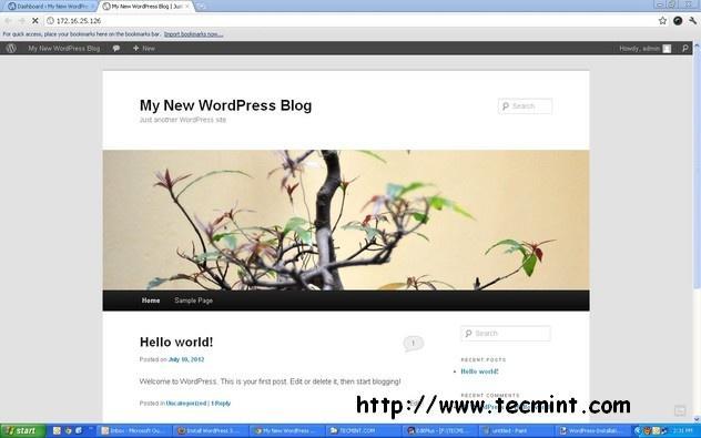 View WordPress Blog