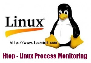 Htop Linux Process Monitoring