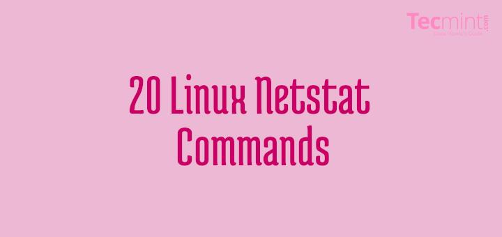 Linux Netstat Command