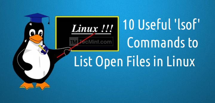 Linux lsof command tutorial for beginners (10 examples) | techlear.