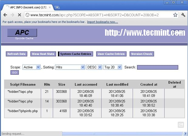 APC System Cache Entries