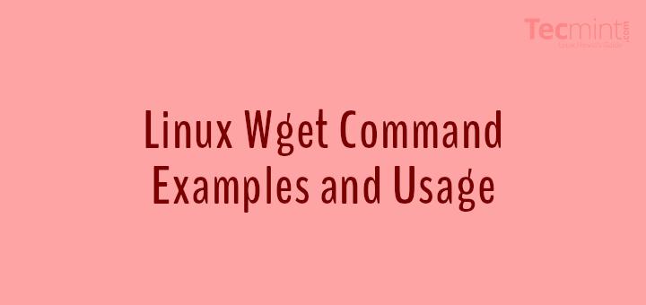 Windows versus Linux Essay
