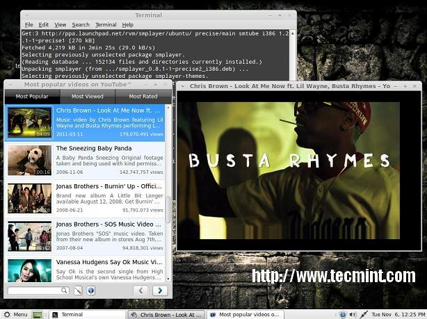 Install SMPlayer in Linux Mint 13