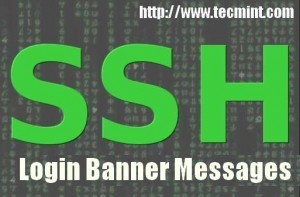 Protect SSH Logins