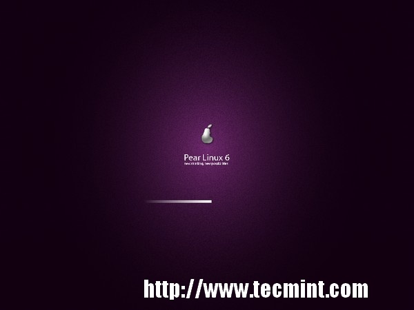 Starting Pear Linux 6