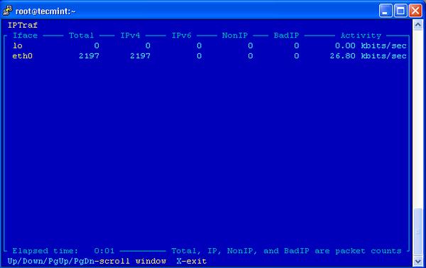 IPTraf General interface statistics