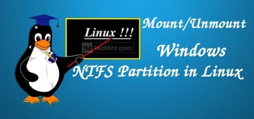Mount Windows Partitions in Linux