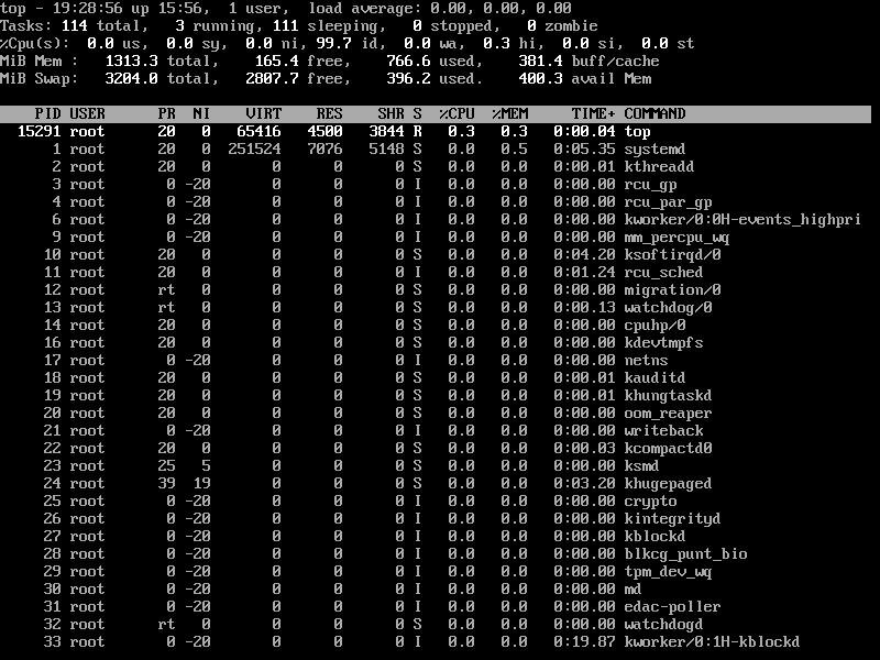 Sort Linux Processes by Memory CPU Usagae