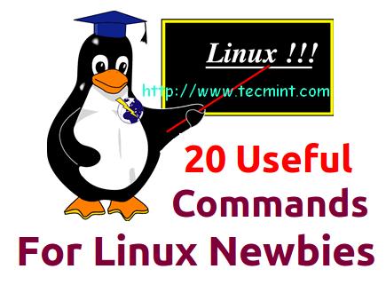 Newbies Linux Commands
