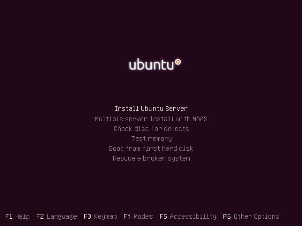 Ubuntu 13.04 Installation