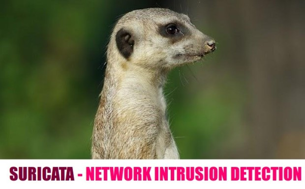 Install Suricata Intrusion Detection