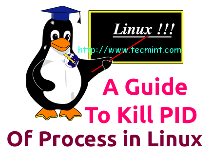 Linux Kill Command