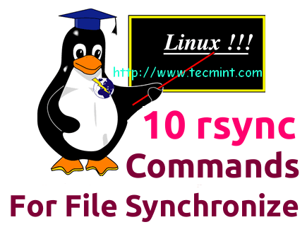 Rsync Local and Remote File Synchronization
