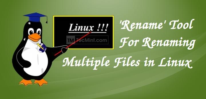 Rename Multiple Files in Linux
