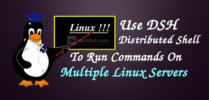 Run Linux Commands on Multiple Servers