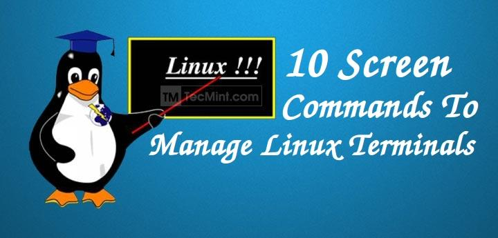 10 Screen Command Examples to Manage Linux Terminals