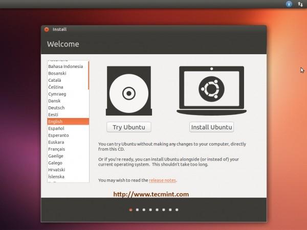 Select Install Ubuntu 13.10