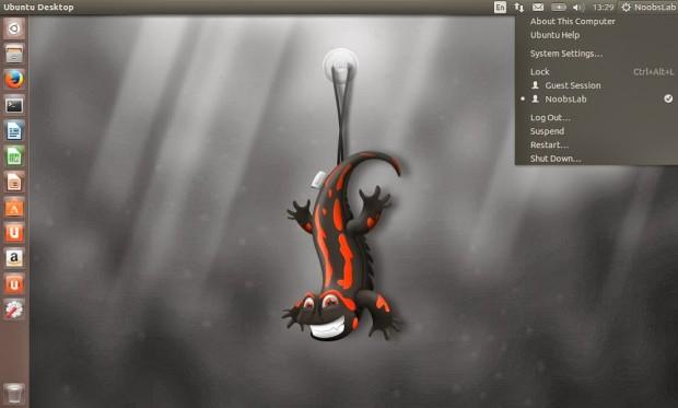 Install Ubuntu 13.10