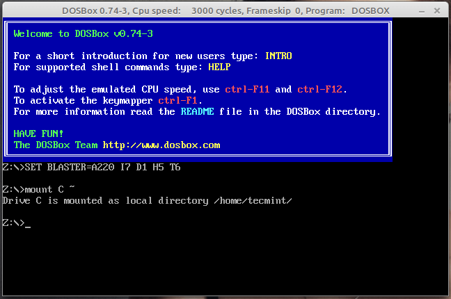 Dosbox Running in Linux Mint