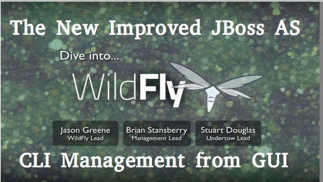 WildFly CLI Management