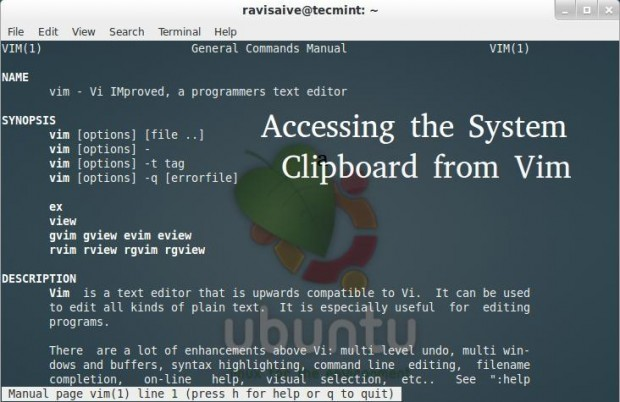 Accessing Clipboard Contents from Vim
