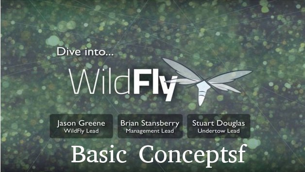 Basic Concepts in WildFly
