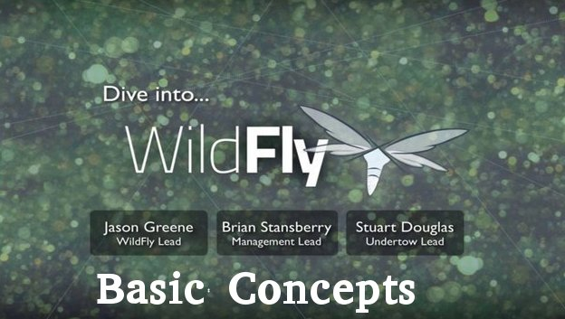 WildFly (JBoss Application Server) Basic Concepts