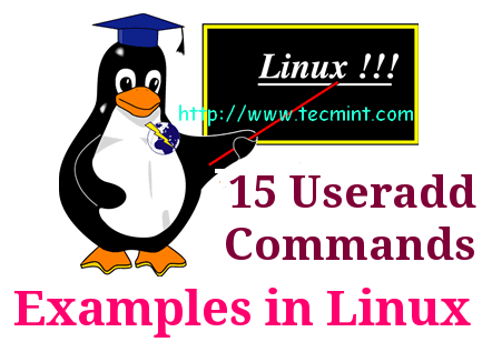 add users in linux