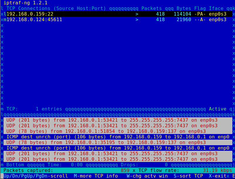IPTraf IP Network Monitor