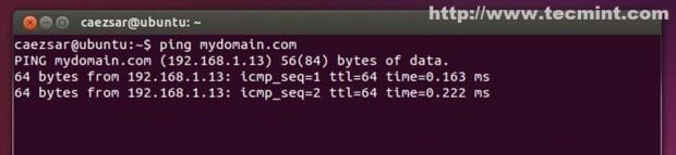 Verify DNS