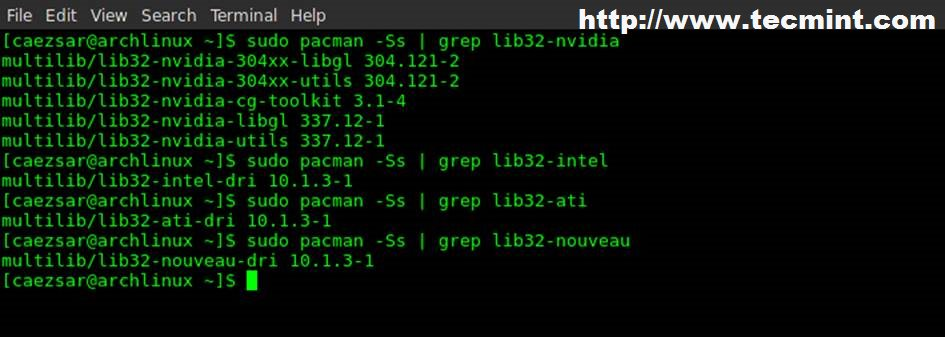 Installing GUI (Cinnamon Desktop) and Basic Softwares in Arch Linux