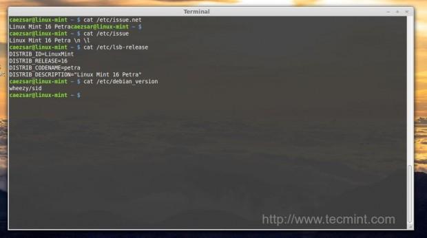 Check Linux Mint Version
