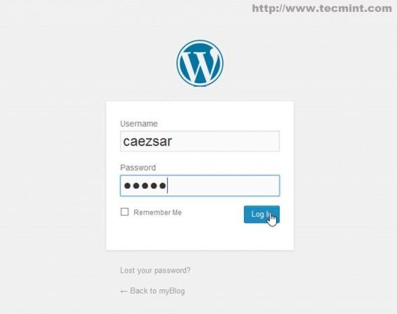 Login into WordPress Dashboard