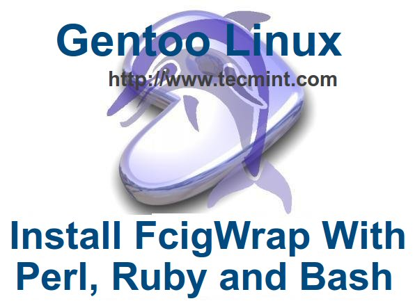 Install FcgiWrap with Perl, Ruby and Bash