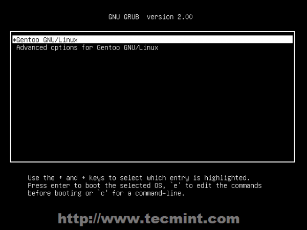 Select Gentoo from Grub Menu