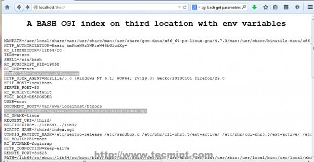 A Bash CGI Index Page