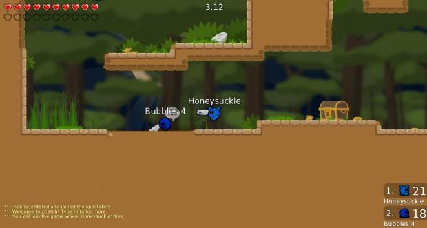 Teeworld Game Modes