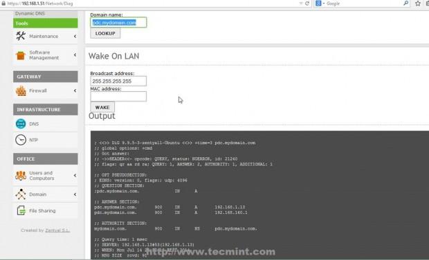 Verify Domain DNS Entries