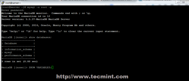 Connect MySQL Database in CentOS