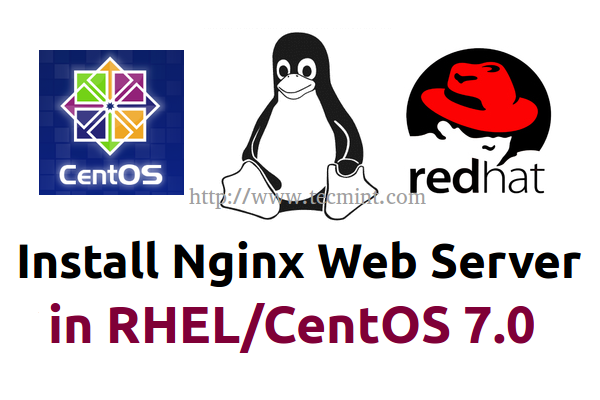 Install Nginx in Centos