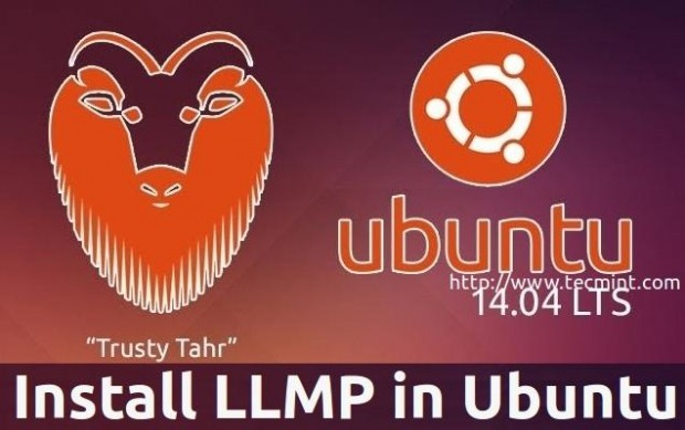 Install Lighttpd on Ubuntu 14.04