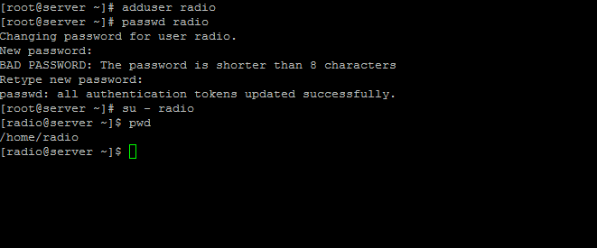 Installing SHOUTCast Radio Server (Online Media Streaming