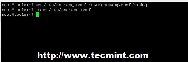 Backup Dnsmasq Configuration