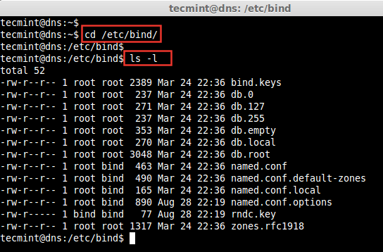 Bind Configuration in Ubuntu