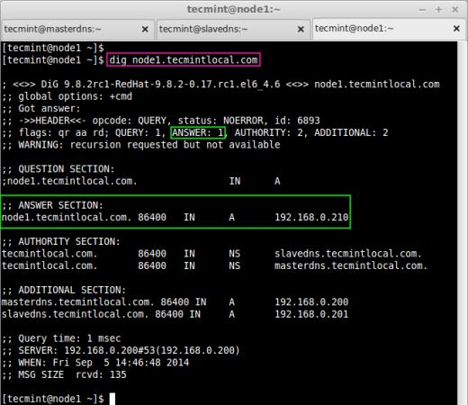 Check Client DNS Info