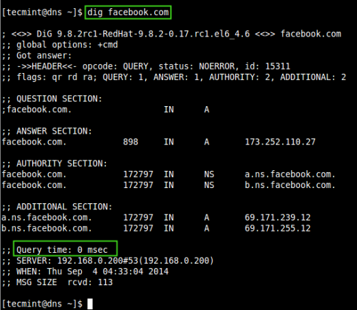 Check DNS Cache