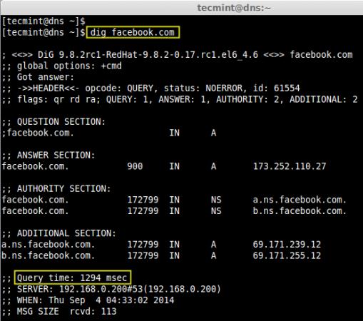 Check DNS using Dig