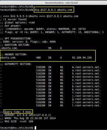 DNS Query Time