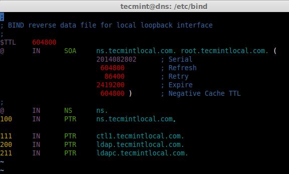 Reverse DNS Entry
